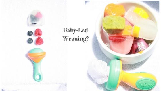 Baby Led Weaning?
